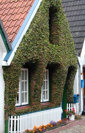Holzverkleidungen und Fassaden